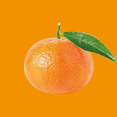 Product-Clementine orange